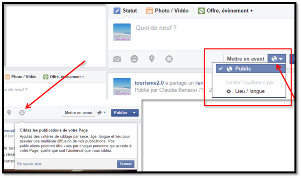 Options de ciblage publications de page Facebook